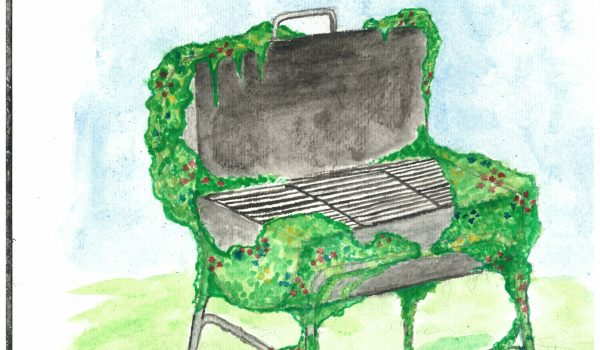 Barbecues vs Nature